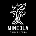 Mineola Consulting, Inc